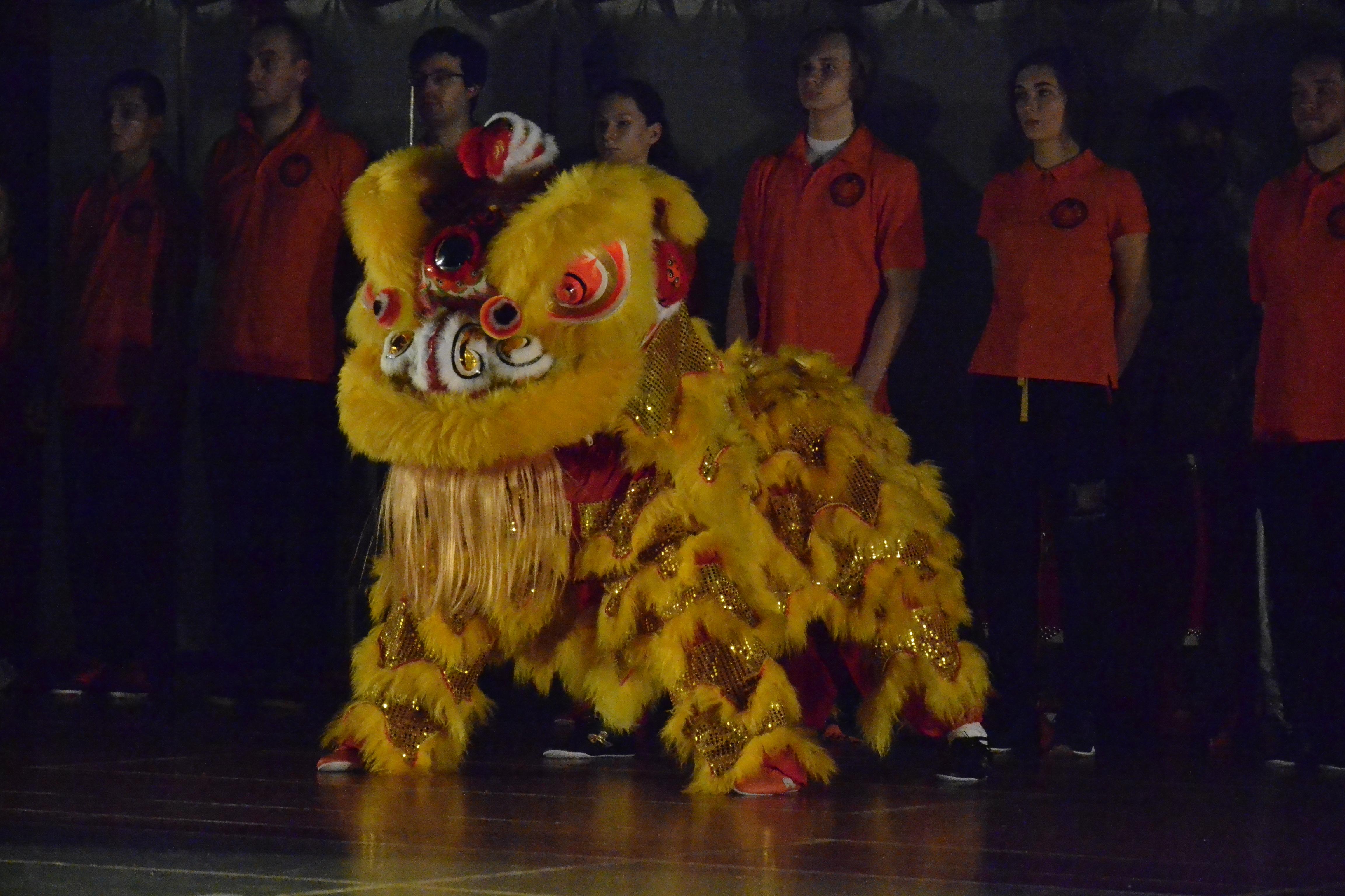 IV WUSHU SHOW - Pokazy chińskich sztuk walki Kung Fu / Wushu szkoły Złoty Lew (25.11.2017)